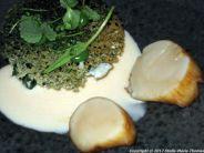alberto-k-scallop-spinach-crisp-bread-champagne-sauce018