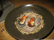 kadeau-blue-mussels-hemp-pine-buds-cream-026