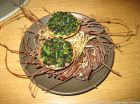 kadeau-whats-in-the-garden-right-now-tartlet-030