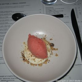 scarpetta-panacotta-vanilla-cantucini-and-blood-orange-sorbet-010