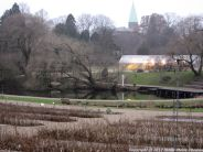 copenhagen-botanical-gardens-003
