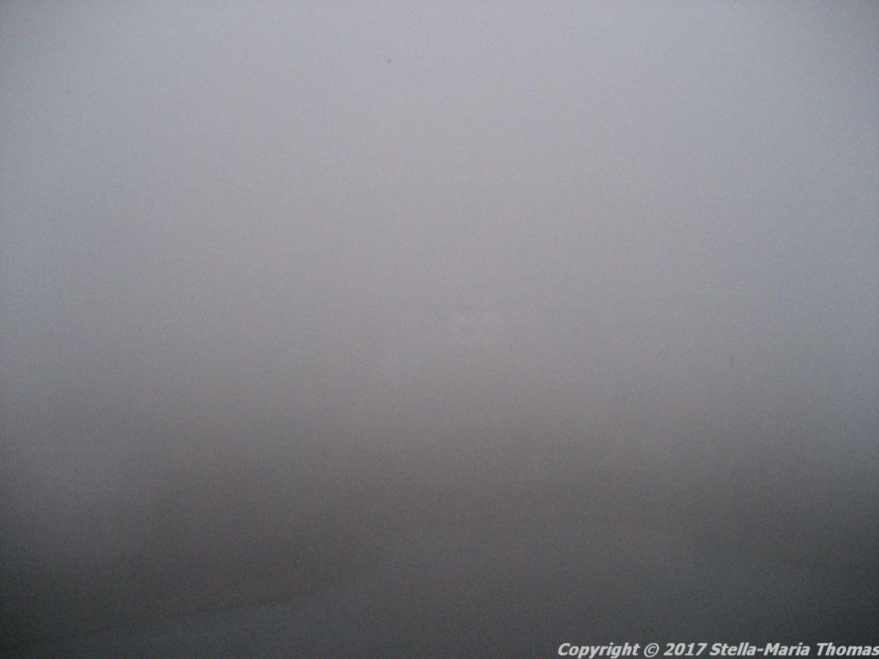 copenhagen-in-the-fog-001