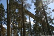 ahvenisto-ski-jump-042_35183549905_o