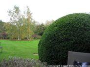 le-manoir-aux-quatsaisons-garden-007_23863908708_o