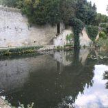 le-manoir-aux-quatsaisons-garden-020_38490477916_o