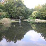 le-manoir-aux-quatsaisons-garden-024_24674343878_o