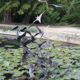 le-manoir-aux-quatsaisons-garden-025_38490465676_o