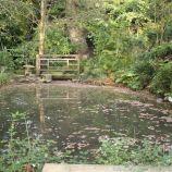 le-manoir-aux-quatsaisons-garden-032_38490449896_o