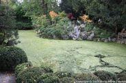 le-manoir-aux-quatsaisons-garden-038_37659102365_o