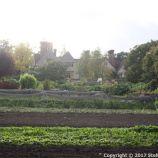 le-manoir-aux-quatsaisons-garden-042_26770928329_o