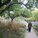 le-manoir-aux-quatsaisons-garden-056_24674379738_o
