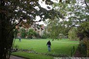 le-manoir-aux-quatsaisons-garden-057_24674374568_o