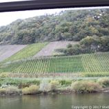 TRABEN-TRARBACH TO ZELL BOAT TRIP 013