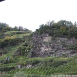 TRABEN-TRARBACH TO ZELL BOAT TRIP 018