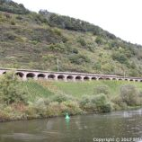 TRABEN-TRARBACH TO ZELL BOAT TRIP 032