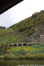 TRABEN-TRARBACH TO ZELL BOAT TRIP 034