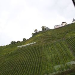 TRABEN-TRARBACH TO ZELL BOAT TRIP 039