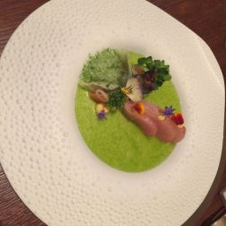 VICTOR'S FINE DINING BY CHRISTIAN BAU - JAPANESE YELLOW FIN MACKEREL, DAIKON, JALAPENO, GRANITEE OF GREEN VEGETABLES 020