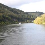ZELL TO TRABEN-TRARBACH BOAT TRIP 019