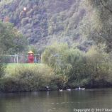 ZELL TO TRABEN-TRARBACH BOAT TRIP 040