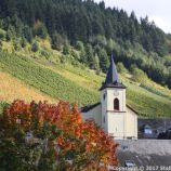 ZELL TO TRABEN-TRARBACH BOAT TRIP 066