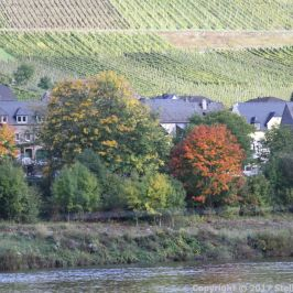 ZELL TO TRABEN-TRARBACH BOAT TRIP 086