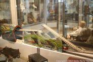 KLOSTER MACHERN TOY MUSEUM 049