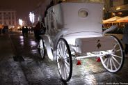 CARRIAGE RIDE 018