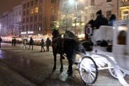 CARRIAGE RIDE 019