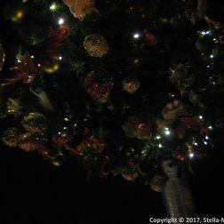 STUDIOQULINARNE, TREE 015