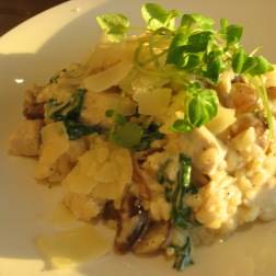 the-navigation-risotto-with-chicken-onions-and-parmesan-003_35754781974_o