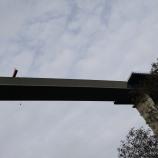 ZELTINGEN BRIDGE 001