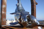 OCEANOGRAPHIC MUSEUM, MONACO 090