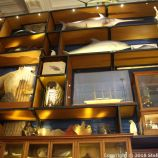 OCEANOGRAPHIC MUSEUM, MONACO 108