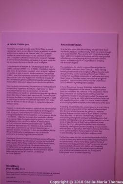 VILLA SAUBER, NEW MUSEUM OF MONACO 024