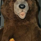 6th-gwa---berlin-bears-001_3100120736_o