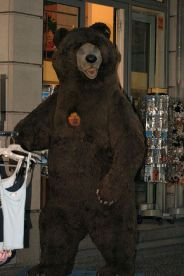 6th-gwa---berlin-bears-002_3100120806_o