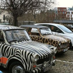 6th-gwa---dresden-trabi-safari-001_3095627391_o