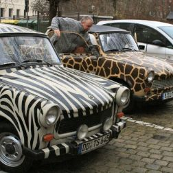 6th-gwa---dresden-trabi-safari-003_3096468714_o