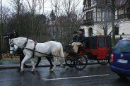 6th-gwa---dresden-trabi-safari-horses-in-blasewitz-002_3096472498_o