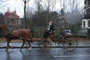 6th-gwa---dresden-trabi-safari-horses-in-blasewitz-003_3096473220_o