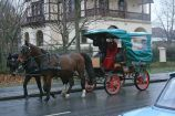 6th-gwa---dresden-trabi-safari-horses-in-blasewitz-004_3095632627_o