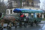 6th-gwa---dresden-trabi-safari-horses-in-blasewitz-005_3095633001_o