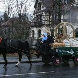 6th-gwa---dresden-trabi-safari-horses-in-blasewitz-006_3095633221_o
