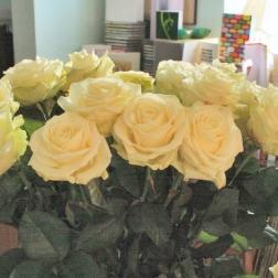 birthday-flowers-13th-february-2008-004_2265716826_o