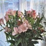 birthday-flowers-13th-february-2008-006_2265716988_o