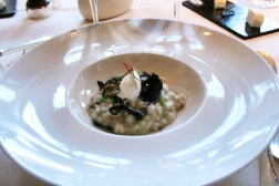 birthday-lunch-le-manoir-wild-mushroom-risotto-and-truffles-13th-february-2008-001_2264939059_o