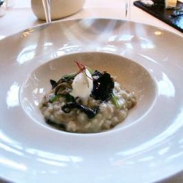 birthday-lunch-le-manoir-wild-mushroom-risotto-and-truffles-13th-february-2008-001_2264939059_o