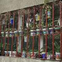 bucharest-style-gardening-001_2799630422_o