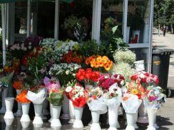 bulevardul-unirii-flower-shop-001_508292753_o